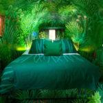 Выбираем декоративные растения для спальни