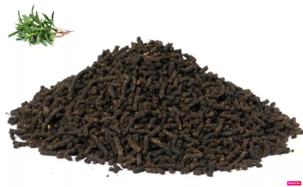 гранулы иван-чая