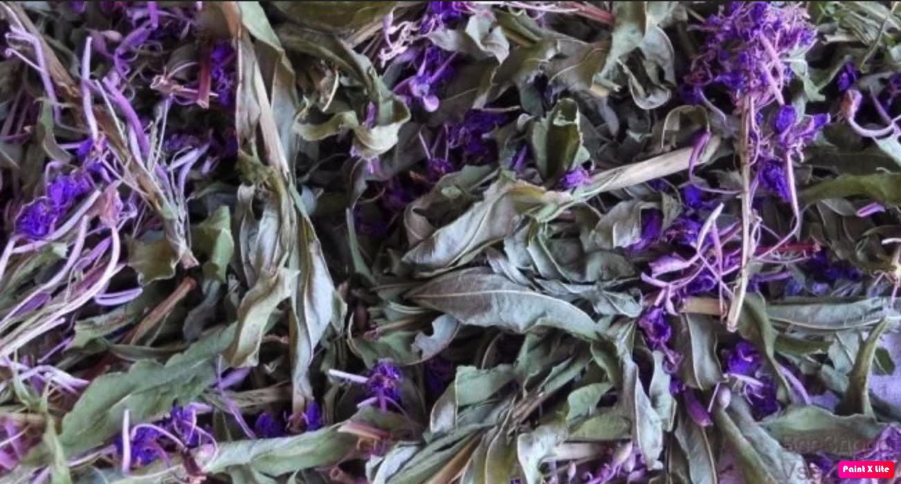 листья и цветы кипрея сушеные