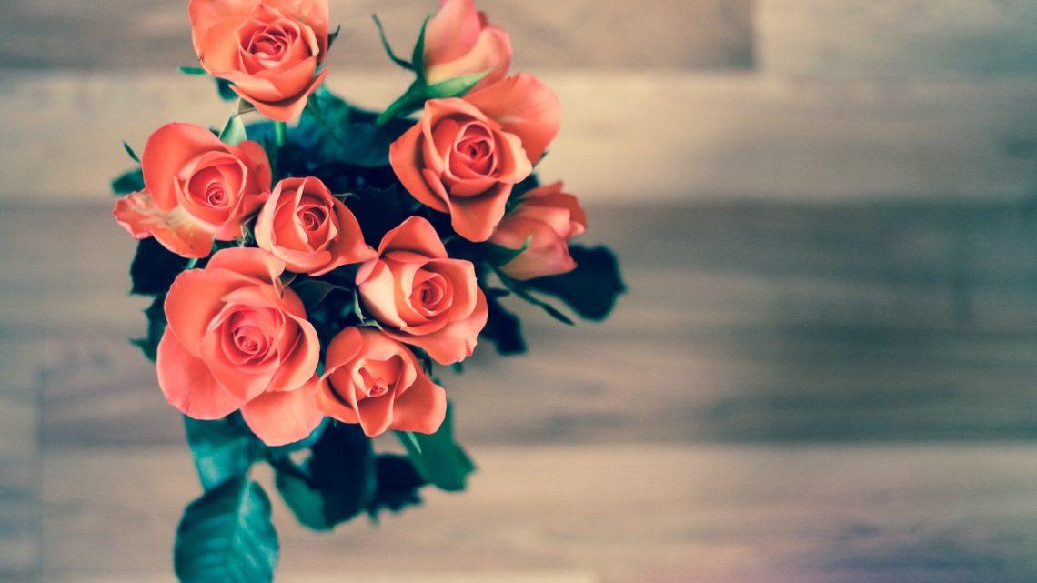 Какие комнатные растения лучше подарить любимой девушке